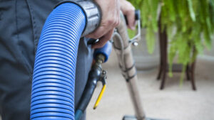 Read more about the article Professional Carpet Cleaning in Ventura, California